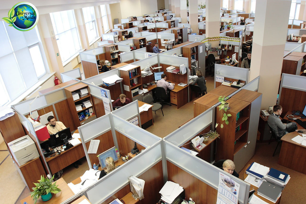 Cubicles and employee